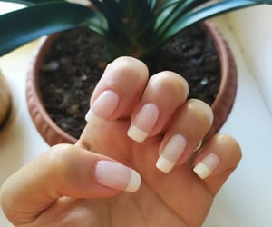 nail, french manicure, and xg image