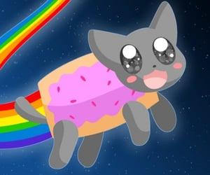 animal, rainbow, and nyan cat image