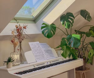 aesthetics, plants, and apartments image