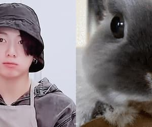 gif, jhope, and taehyung image