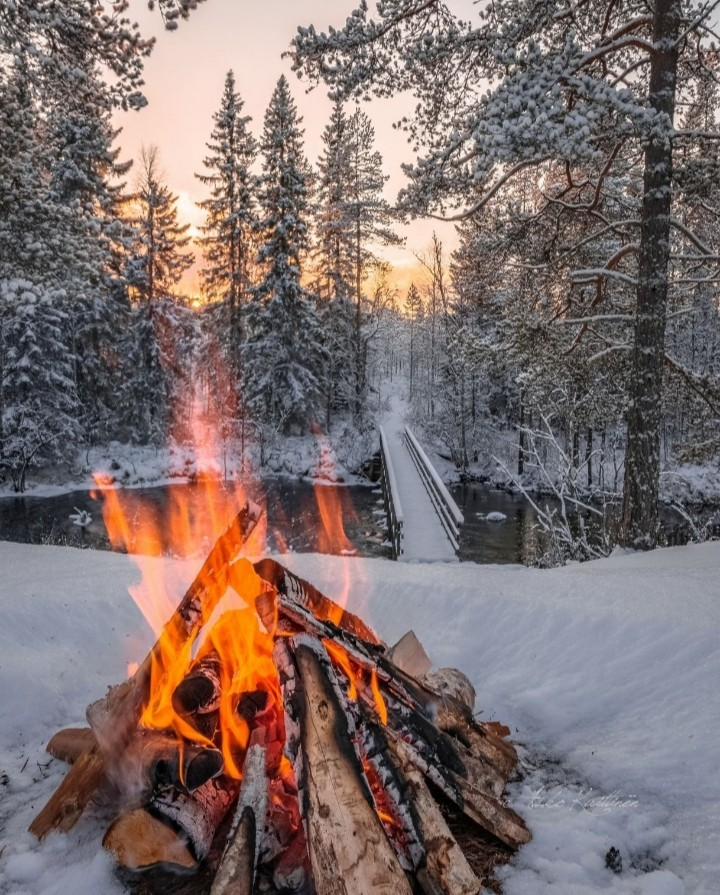 aesthetic, christmas, and fire image