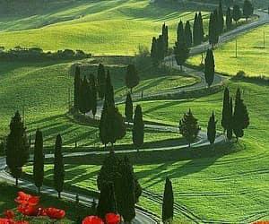 Tuscany, italy, and nature image