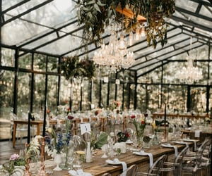 fairy lights, flowers, and greenhouse image