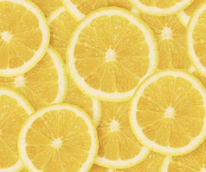 aesthetic, food, and lemon image
