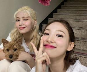 nayeon, twice, and momo image