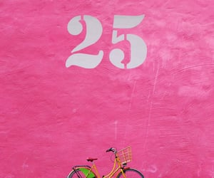 25, bicycle, and facade image