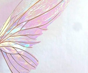 fairy, wings, and girl image