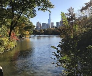 Central Park, lake, and nature image