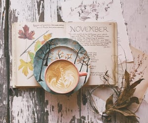 book, november, and autumn image