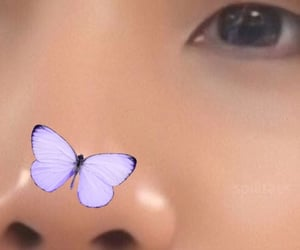 butterfly, suga, and details image