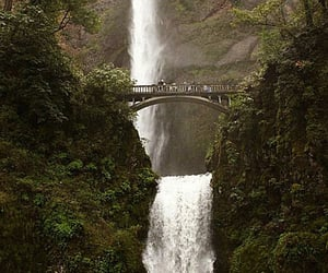 multnomah, multnomah creek, and Multnomah Falls image