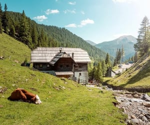 Alps, austria, and cabins image