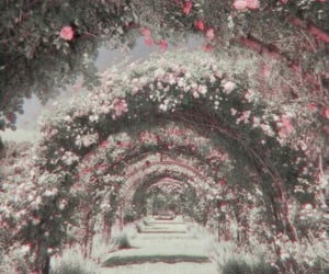 theme, fairy garden, and polarr image