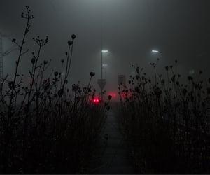 dark, youth, and dark aesthetic image