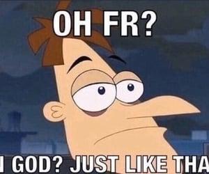 meme, reaction, and reaction pics image