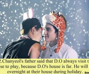 exo, d.o, and exo facts image