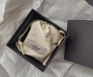 Valentino and unboxing image