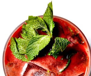 Adult, cocktail, and mojito image