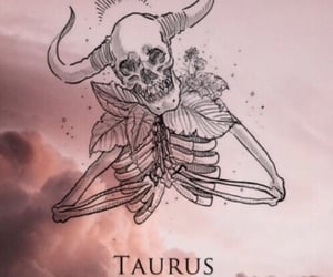 taurus, wallpaper, and zodiac image