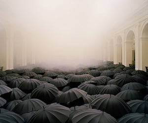umbrella, black, and fog image