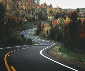 autumn, road, and Road Trip image