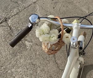 bloom, inspiration, and bycicle image