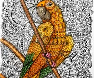 turkiye, artists on tumblr, and zentangle art image