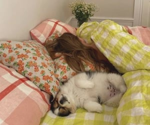dog, bed, and girl image