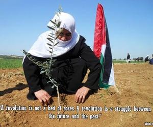 Gaza, occupation, and palestine image