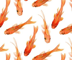 aesthetic, fishes, and patterns image