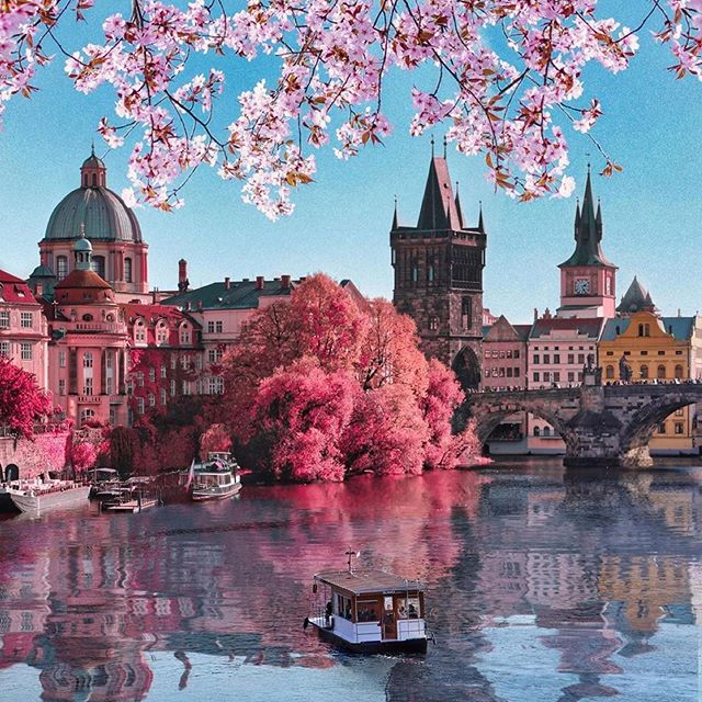 pink, boat, and czech republic image