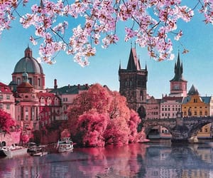 boat, czech republic, and flowers image