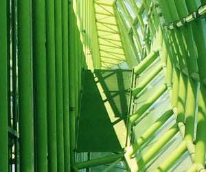 green, lime, and structure image