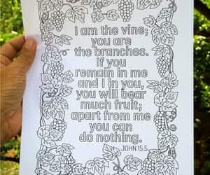 etsy, grapes, and vine image
