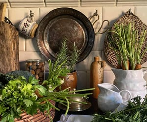 cooking, food, and herbs image