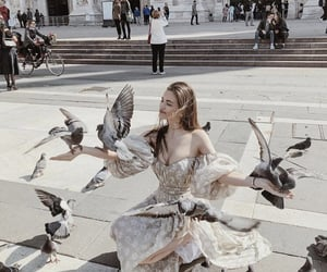 birds, dress, and fashion image