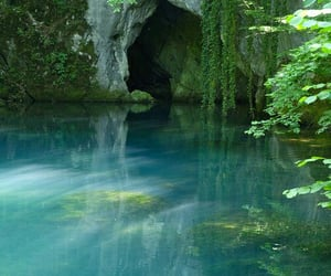 water, nature, and green image