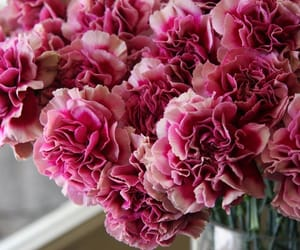 flowers, background, and bouquet image