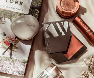 cosmetics, lip balm, and blushes image