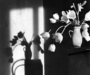 aesthetic, b&w, and blanco y negro image