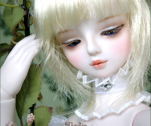 bjd, doll, and white image