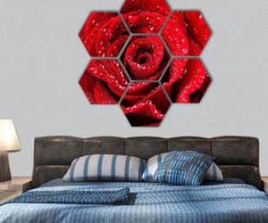 dew drops, red rose, and canvaswallart image