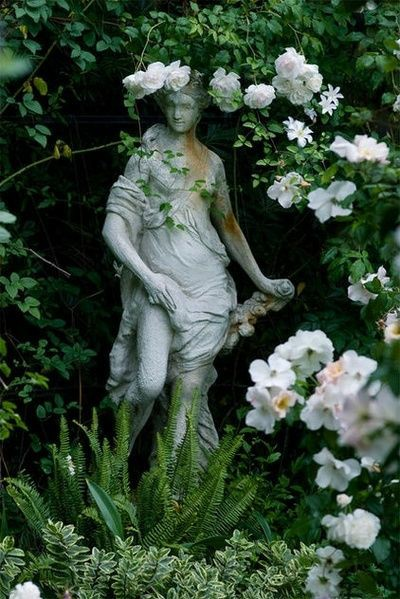 art, garden, and rose image