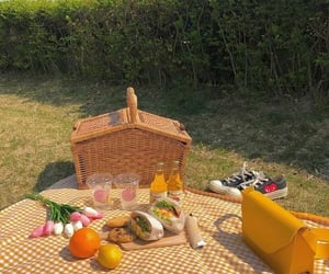 food, garden, and picnic image