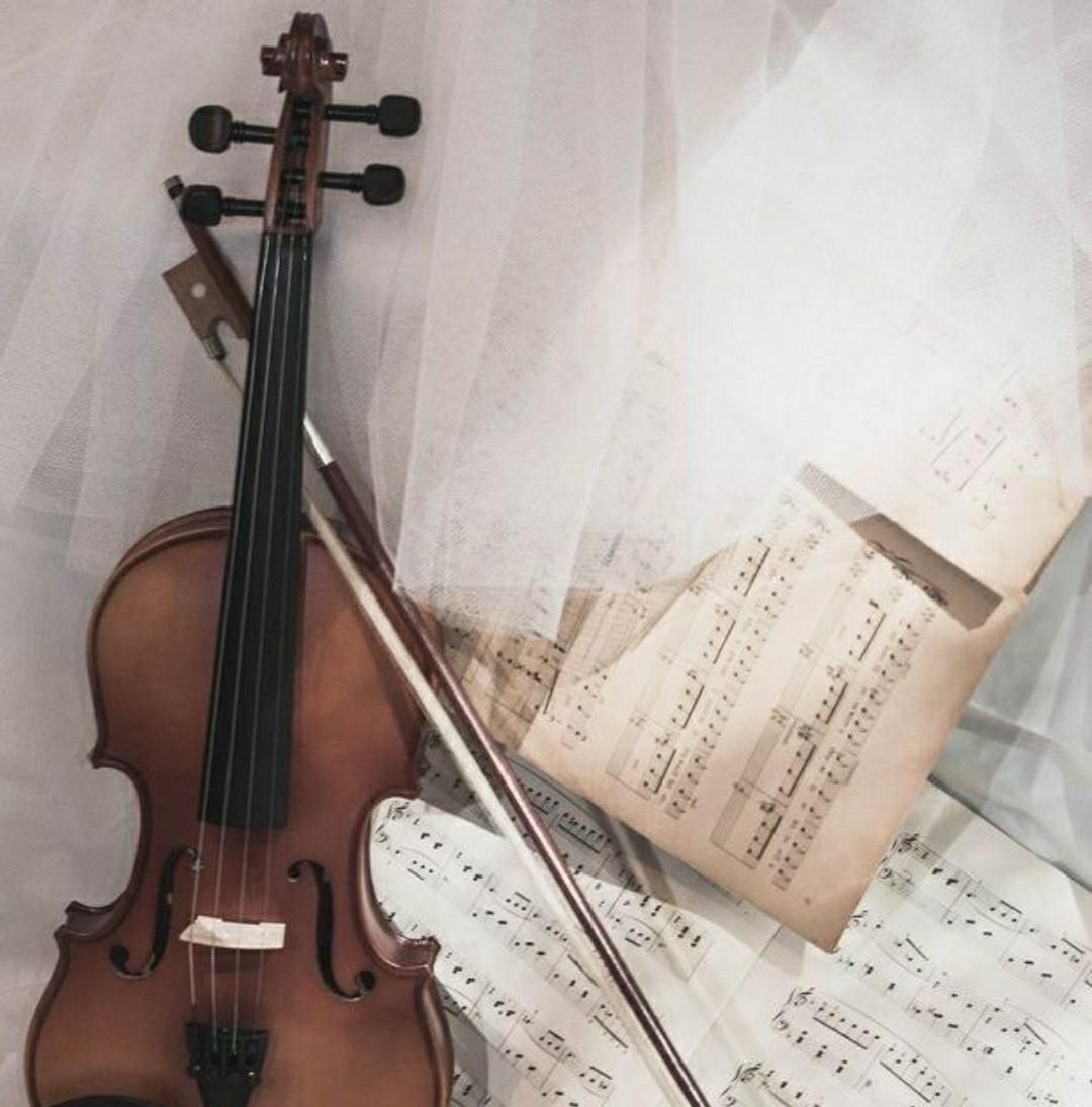music, violin, and vintage image