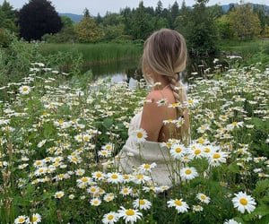 nature, countryside, and fashion image