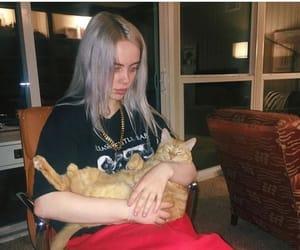 billie eilish, cat, and animals image