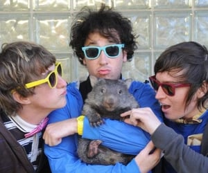indie, music, and the wombats image