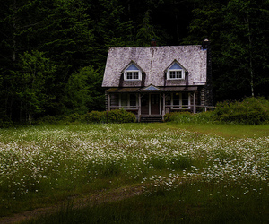 home, house, and lonely image