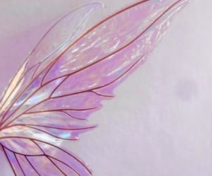 fairy, girl, and wings image